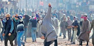pellets-option-deal-stone-pelters