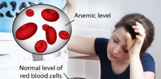 seven-natural-ways-to-increase-hemoglobin