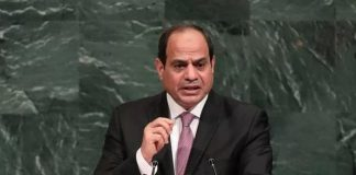 egypts-sisi-asks-palestinians-israelis-support-steps-towards-peace