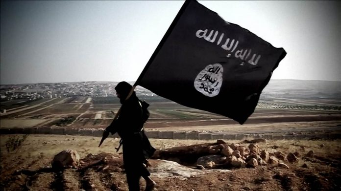 nine-held-in-maharashtra-for-links-with-isis