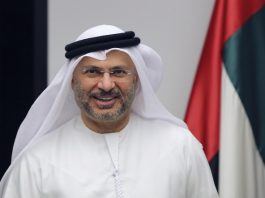 uae-minister-warns-iranian-turkish-solution-syrian-conflict