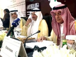 iran-continues-back-houthis-saudi-fm-tells-oic
