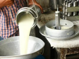 maharashtra-govt-give-rs-3-per-litre-subsidy-milk-producers