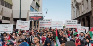 mass-rally-morocco-solidarity-palestine-great-march-return