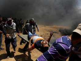 palestine-asks-icc-investigate-israels-war-crimes