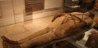 egypt-uncovers-mummy-burial-site-near-great-pyramids