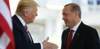 donald-trump-doubles-turkey-tariffs-world-trade-organisation-rules
