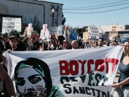Why Israel sees BDS as a 'strategic threat'